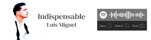 Luis Miguel La Litera Indispensable Playlist Playlists Spotify
